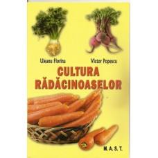Cultura radacinoaselor (morcov, telina, sfecla rosie, pastarnac, napi comestibili, ridichi, hrean)