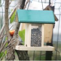 Hrănitoare pentru păsări universală